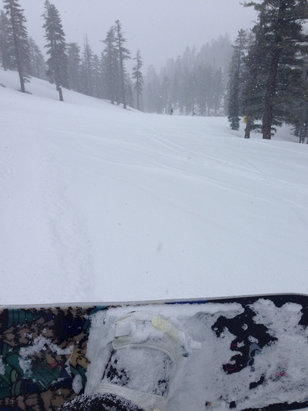 Heavenly Mountain Resort - Epic afternoon-fresh powder!  - ©iPhone