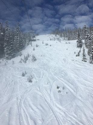 Wolf Creek Ski Area - Wolf Creek Rocks! Great snow ! Good people!  - ©Logan's iPhone