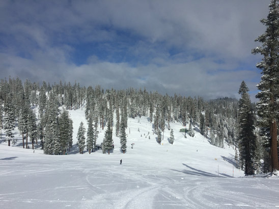 Northstar California - Best snow of the season today! Surprise storm!!! Could not find a run that was less than great. - ©Jerry's phone