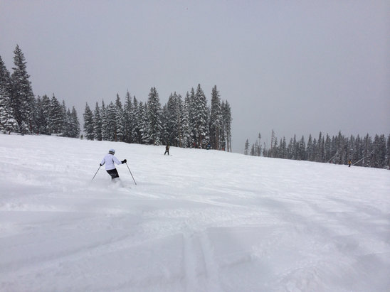 Beaver Creek - Powder at BC  6 inches yesterday, 8 inches today  very nice day.  - ©lyons's iPhone