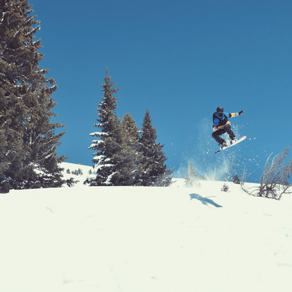 Vail - Saw this dawg on the mountain  - ©Sean White