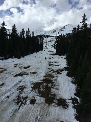 Marmot Basin - Look forward to next year. Very limited runs open today with a Grizzly in the area. - ©Jason's iphone 6s