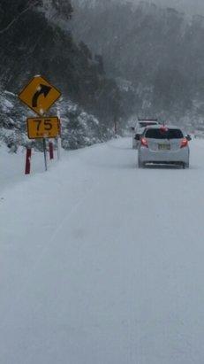 Perisher - amazing snow - ©ludostablet
