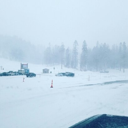 Mammoth Mountain Ski Area - windy but super thick powder at least out of main lodge. snow level now down to 8k. - ©eric