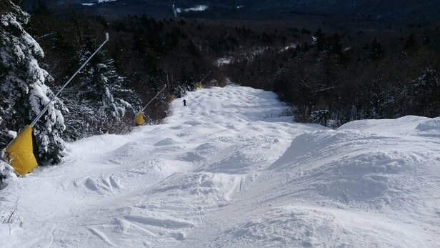 Stratton Mountain - Was a fun, windless day. great moguls, woods are almost there, no complaints here.  - ©mdupuree