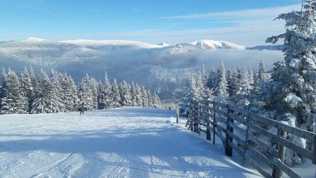 - ©2 berliner skihasen
