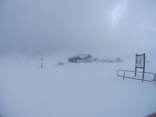 Superdevoluy / La Joue du Loup - Fresh Snow - ©SiPhone