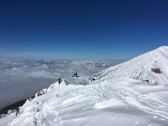 Arizona Snowbowl - Alpine powder turns in AZ. Only good feelings today.  - ©Josh's iPhone