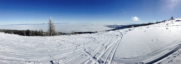 Vitosha - Beautiful day today. Only one run open and it was skied off by the afternoon but you can find plenty of powder at the top.  - ©ISABEL's iPhone