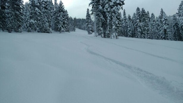 Northstar California - Skied 1/23 conditions do not any better. Deep snowpack so no obstacles anywhere and mountain fully open, knee to waist deep dry powder, cold temps with no wind so snow stayed light all day, no crowds. AS GOOD AS IT GETS!!! - ©mohare417
