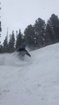 Park City - Sick day. Pow found all over. Condor woods. Peak 5 was awesome sauce    - ©James's iPhone