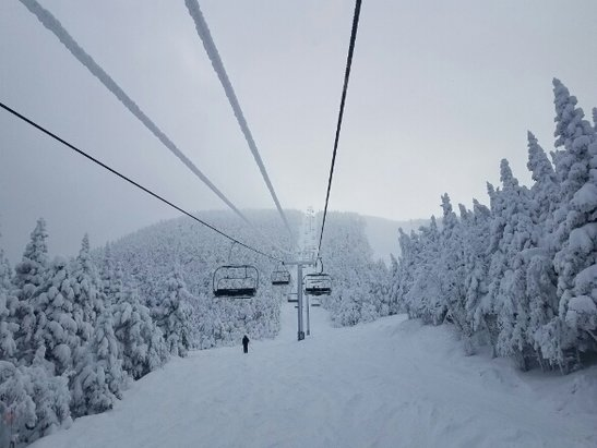 Sugarbush - Friday was insane. great snow in the Glades  - ©anonymous