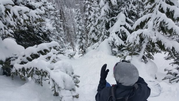 Wolf Creek Ski Area - Steep and deep!  - ©dgaf4201221