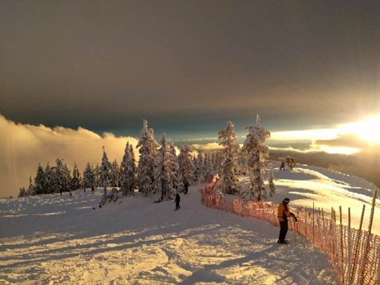 Cypress Mountain - really soft powder up top, as you come down it got just a bit heavier but still nice. - ©powdermonkey007