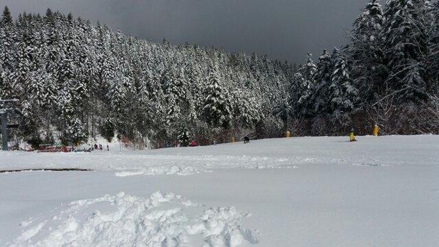 Abetone - Neve fresca 30/40 cm a 1400 mt. Temperatura 5 gradi. Coperto con schiarite e sole. Poste perfette - ©Max