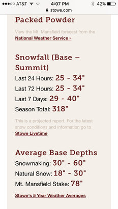 Stowe Mountain Resort - Like a switch, it's on!   More powder than this app let's you post... - ©hammertime