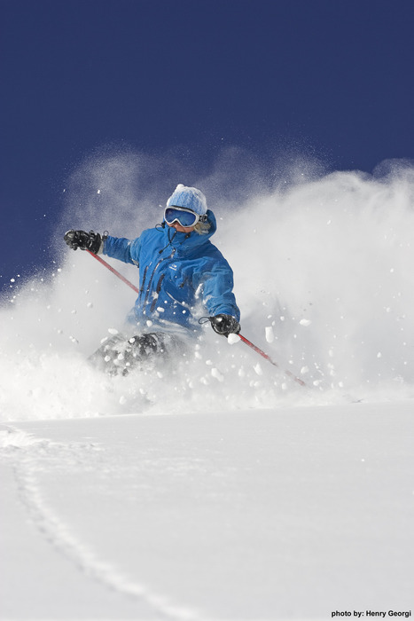 Skier in powder at Lake Louise