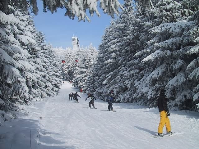 Snowboarders at Braunlage, Germany.