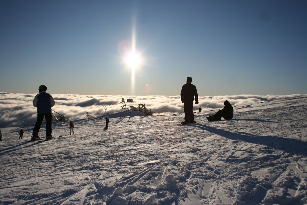 Skiers atop Mount Hood Meadows, Oregon. Image by Grant Myrdal.