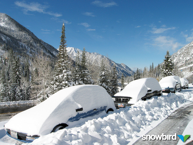 Cars covered in snow in Snowbird, Utah