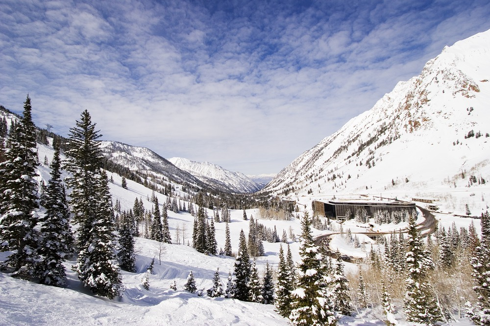 Photo Credit:  Snowbird Ski & Summer Resort