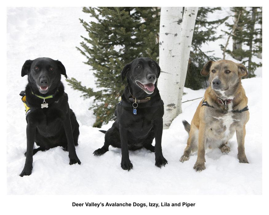 Photo Credit: Deer Valley
