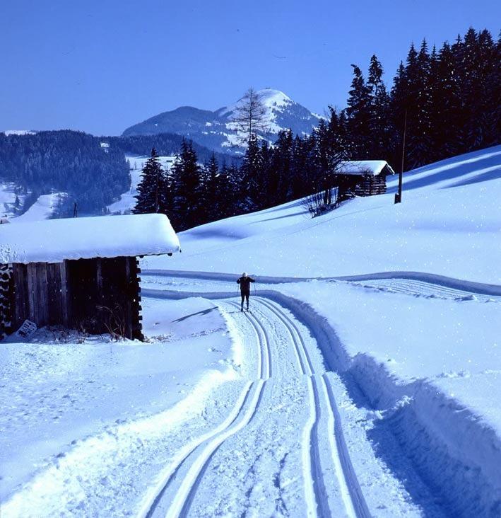 Snowy tracks by Wildschönau, AUT.