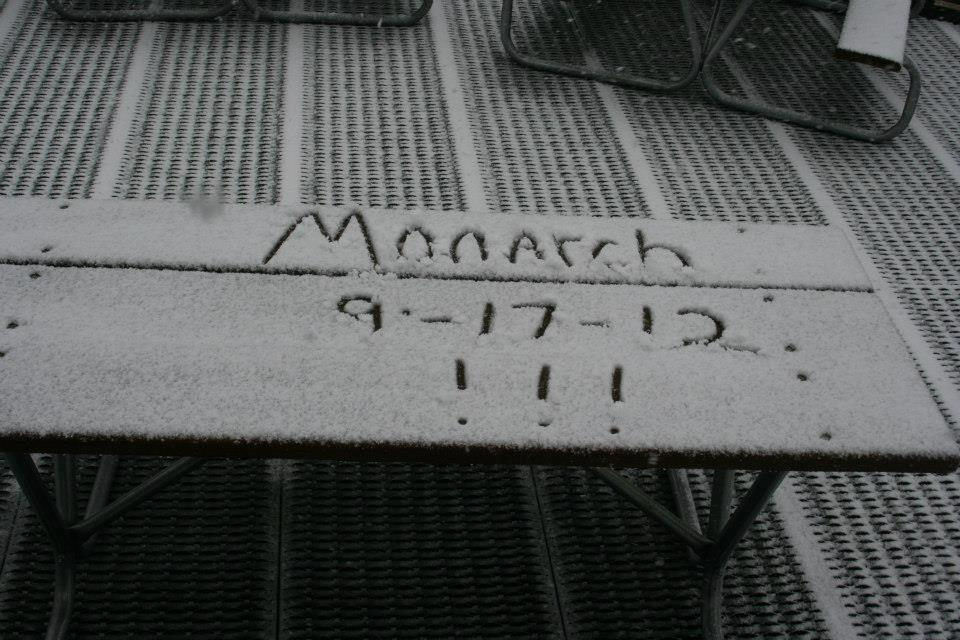 Monarch Snowfall