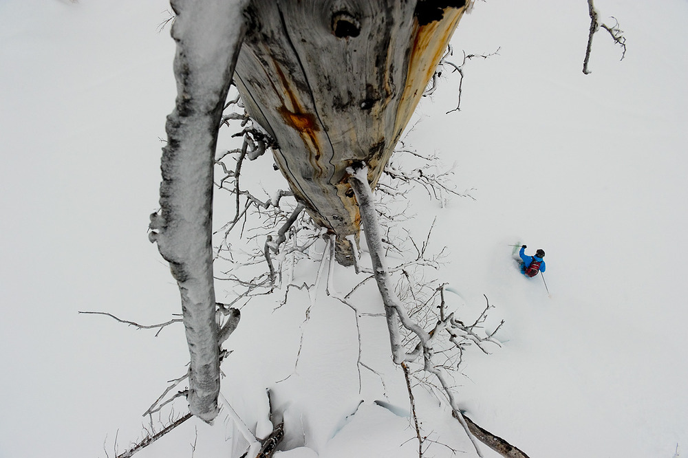 Dave Treadway descends beneath the gaze of a burnt old growth Sub Alpine Fur at Monashee Powder Snowcats. For me, moving through these kinds of spaces is a real privilege.