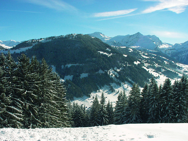 The scenic mountains over Gstaad, SUI