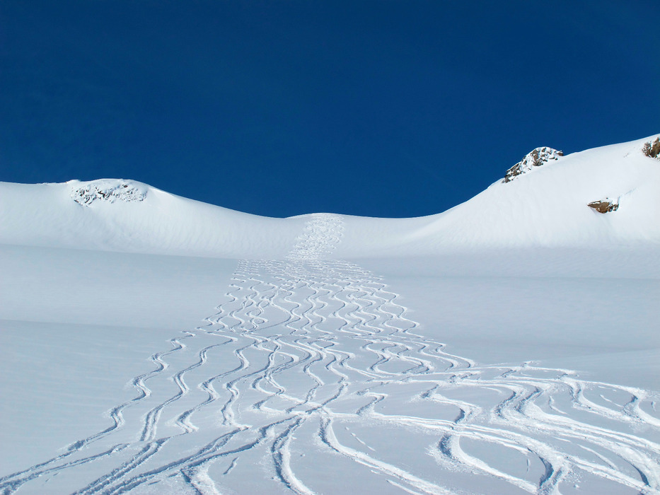 It was a day of fresh tracks for everyone - ©Krista Crabtree