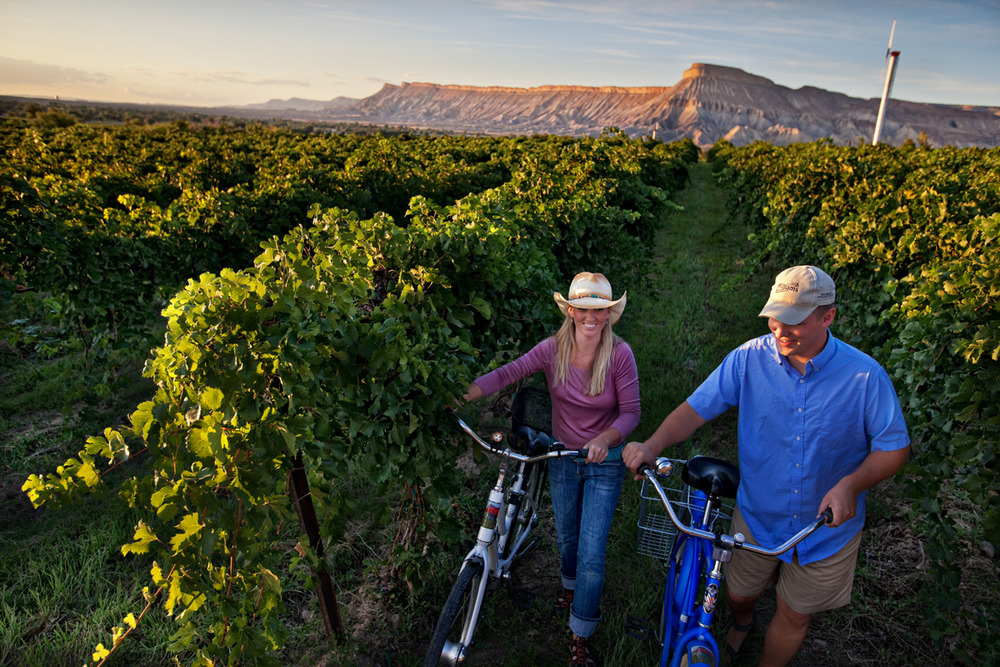 Enjoy the wine country and the unique landscape around the Grand Junction area.