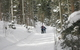 Two cross country skiers at Enchanted Forest, NM