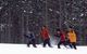 Cross country skiing in Crystal Mountain, Michigan