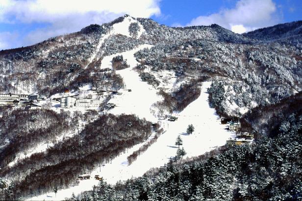 Skifahren in Shiga Kogen (Japan) - ©Christoph Schrahe