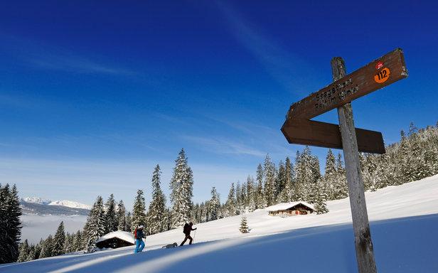 Reit im winkl winklmoosalm bilder auf skitour oberhalb