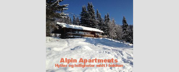 Alpin Apartments - ©Overnatting