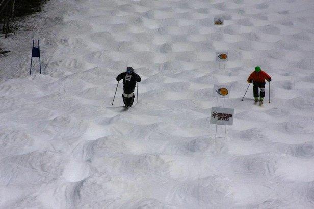 Moguls, Money & Malarkey Bump Competition at Ski Sundown - ©Ski Sundown
