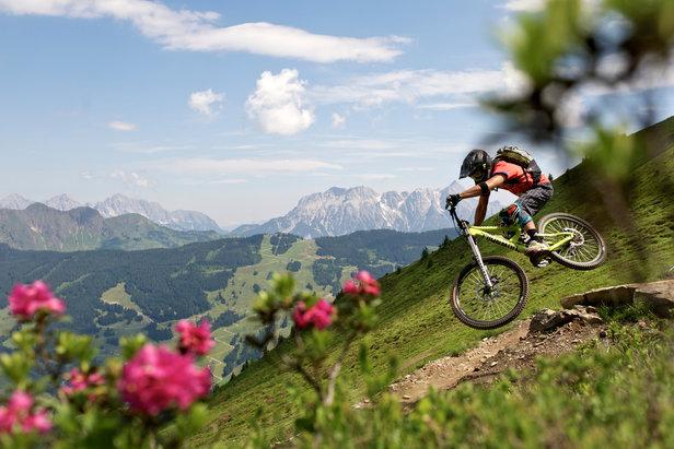 Bikepark Saalbach