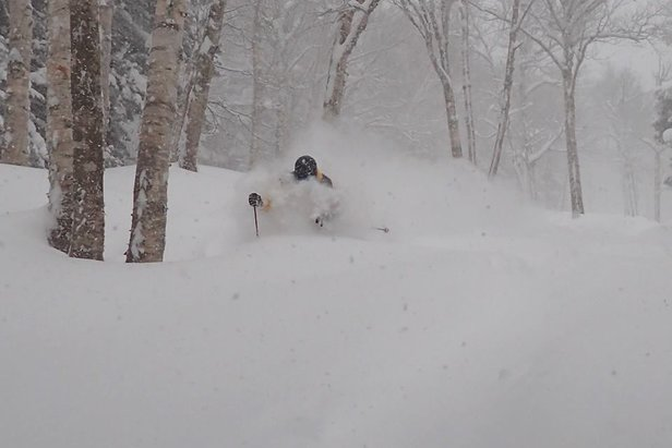 Tappin' trees in Vermont. - ©Smugglers' Notch