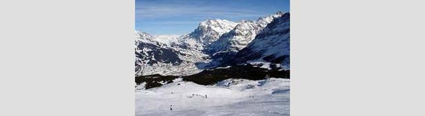 Grindelwald - slopes 225px