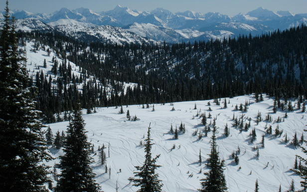 Whitefish overlooks the peaks of Glacier National Parkj. Photo by Becky Lomax.