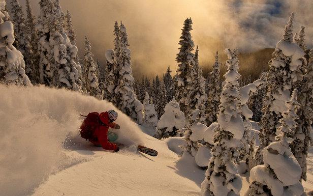 Traumhafte Powderabfahrt von Profi Adam Ü - ©Grant Gunderson