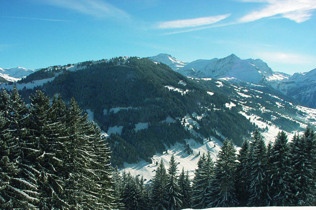 Gstaad mountains