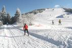 Eine Winterwunderwelt im Schwarzwald