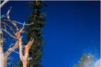Telemark Event 2002 war ein voller Erfolg - ©Tomas Annerby