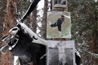 Aspen/Snowmass Tree Shrines: The Golf Shrine