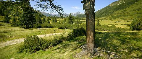 Trittfit Nordic Walking Obertauern