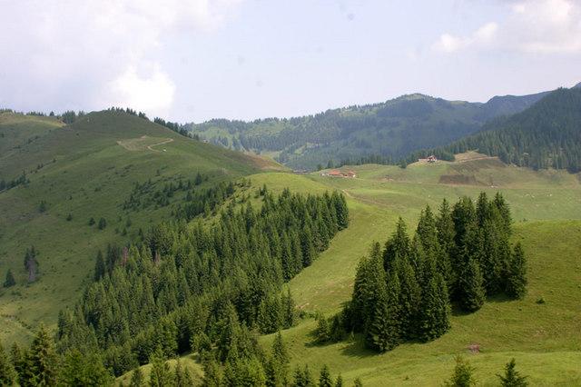 Hitscheralm - Brennkopf - Burgeralm - Walchsee (über Wasserfall)