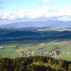 Hanriederweg (15 km)